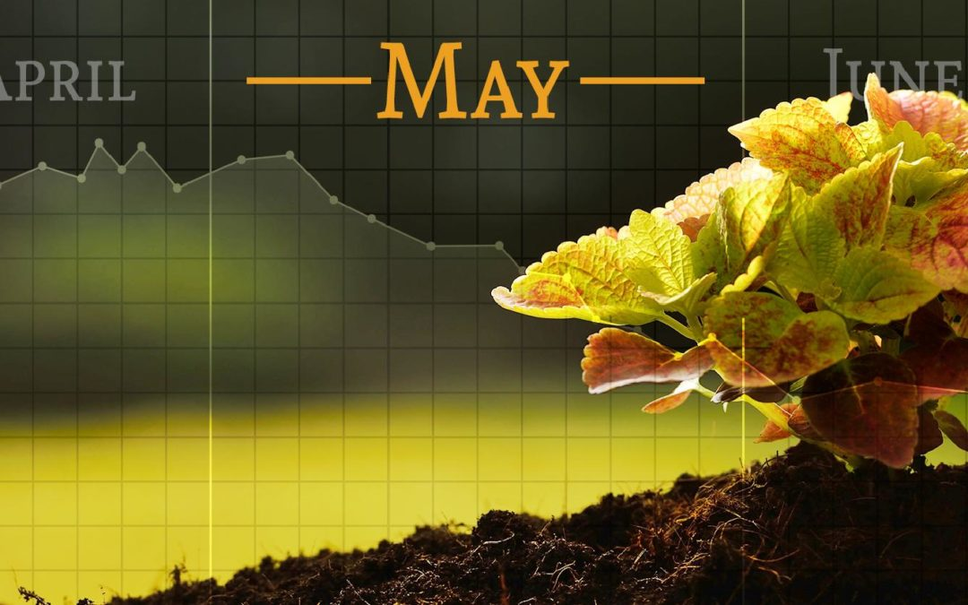"What does it mean to ""Sell in May and Go Away""?"
